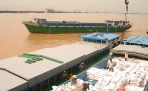 Xuất khẩu gạo trở lại bình thường từ 1/5/2020