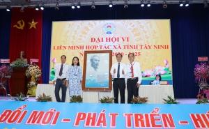 Phó Chủ tịch Nguyễn Mạnh Cường dự Đại hội Liên minh HTX tỉnh Tây Ninh lần thứ VI, nhiệm kỳ 2020 – 2025