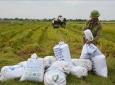 Nam Định: Lan tỏa chuỗi liên kết sản phẩm chủ lực