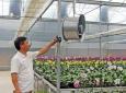 Đòn bẩy để phát triển các HTX nông nghiệp ở Quảng Ninh