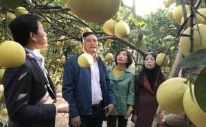 Hà Nội: Tăng cường công tác tuyên truyền, khắc phục tình trạng hợp tác xã gặp khó trong tiếp cận thông tin pháp luật