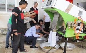 Hỗ trợ HTX sản xuất, kinh doanh theo chuỗi giá trị: Hướng đến lợi ích lâu dài trong sản xuất nông nghiệp