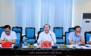 Chủ tịch Nguyễn Ngọc Bảo làm việc với Saigon Co.op về kế hoạch hỗ trợ phát triển HTX