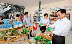 Liên kết với Tổ chức HTX ASEN quảng bá sản phẩm ra thị trường thế giới