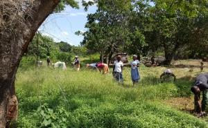 Hỗ trợ tích cực cho các HTX chăn nuôi