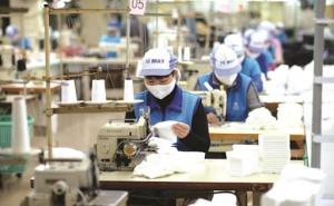 Hỗ trợ doanh nghiệp, HTX, hộ kinh doanh phục hồi sản xuất