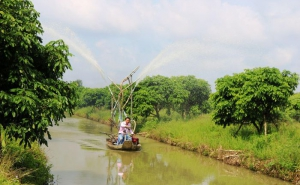 Cờ Đỏ phát triển thêm 3 hợp tác xã nông nghiệp