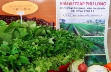 Chiến lược phát triển kinh tế tập thể, hợp tác xã tỉnh Bình Thuận đến năm 2030