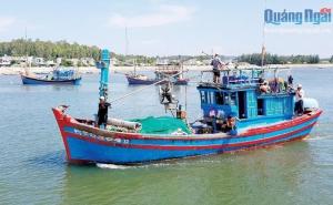 Quảng Ngãi: Hợp tác xã Dịch vụ và khai thác hải sản xa bờ: Khó vẫn hoàn khó