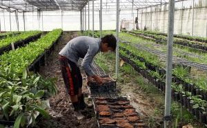 Quảng Ninh: Nhiều HTX nông nghiệp thiếu trụ sở làm việc