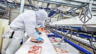 Hà Nam xây dựng chuỗi liên kết trong chăn nuôi