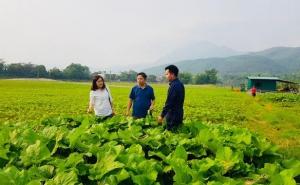 Liên minh HTX tỉnh Yên Bái tiếp tục làm việc, đồng hành với xã Trạm Tấu và nắm bắt tình hình phát triển Kinh tế tập thể tại một số địa phương