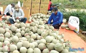 Quảng Ninh: Sớm giải thể các hợp tác xã đã ngừng hoạt động