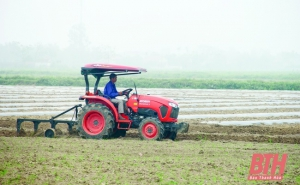Thanh Hoá: Phát triển tiêu chí sản xuất tại các xã nông thôn mới nâng cao