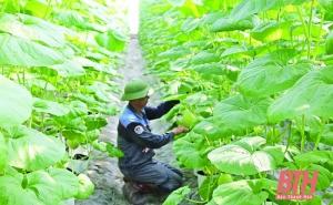 Huyện Thiệu Hóa phát triển nông nghiệp gắn với xây dựng nông thôn mới