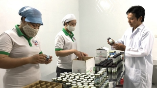Bà Rịa - Vũng Tàu: Thay đổi tư duy sản xuất nông nghiệp
