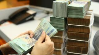 Khánh Hoà: Hợp tác xã có doanh thu cao nhất hơn 67 tỷ đồng
