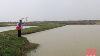 Thanh Hoá: Xã Hoằng Phong phát triển nuôi trồng thủy sản