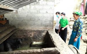Hà Giang: Nuôi lợn sinh kế ở Phú Lũng