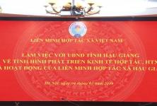 Chủ tịch Nguyễn Ngọc Bảo làm việc với UBND tỉnh Hậu Giang về phát triển KTHT, HTX