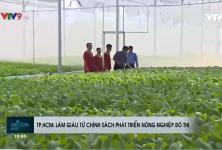 Người dân làm giàu từ chính sách phát triển nông nghiệp đô thị