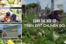 Bạn nhà nông: HTX NN Trường Xuân, Giao Thủy, Nam Định - Canh tác hữu cơ trên đất chuyển đổi