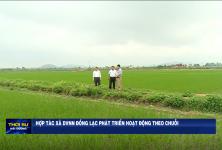 Hợp tác xã DVNN Đồng Lạc phát triển hoạt động theo chuỗi