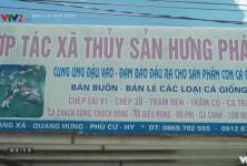Bạn nhà nông: HTX Thủy sản Hưng Phát - Phú Cừ, Hưng Yên