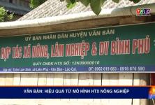 Lào Cai: Hiệu quả từ mô hình hợp tác xã nông nghiệp kiểu mới