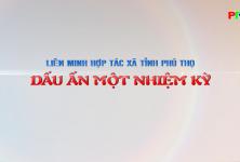 Phóng sự: Liên minh HTX Phú Thọ - dấu ấn một nhiệm kỳ