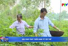 Phú Thọ: Giải pháp phát triển kinh tế tập thể