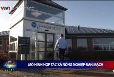 Mô hình HTX nông nghiệp Đan Mạch