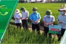 Phát triển nông nghiệp nông thôn: Đưa nông sản lên sàn thương mại điện tử