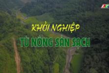 Lai Châu: Khởi nghiệp từ nông sản sạch