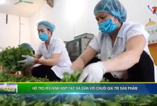 Thái Nguyên: Hỗ trợ mô hình hợp tác xã sản xuất gắn với chuỗi giá trị sản phẩm