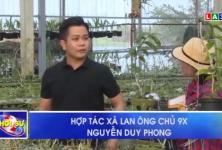 Hợp tác xã lan ông chủ 9X Nguyễn Duy Phong