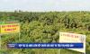 HTX AMEII liên kết chuỗi sản xuất và tiêu thụ nông sản