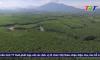 Thừa Thiên Huế: Đẩy mạnh thực hiện Đề án phát triển Hợp tác xã lâm nghiệp bền vững