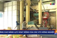TH Lào Cai: Nâng cao năng lực hoạt động của các hợp tác xã nông nghiệp