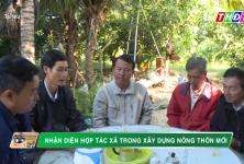 Đồng Tháp: Nhận diện Hợp tác xã trong xây dựng Nông thôn mới | THDT