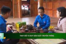 Thái Nguyên: Thay đổi tư duy sản xuất truyền thống