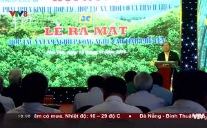 Hội nghị phát triển kinh tế Hợp tác xã tại tỉnh Phú Yên