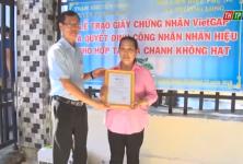 Cấp chứng nhận VietGAP và công nhận nhãn hiệu Hợp tác xã chanh không hạt xã Trường Long