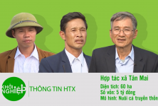 Khởi nghiệp: HTX chi 5 tỷ đồng, nuôi cá trên diện tích 60 ha