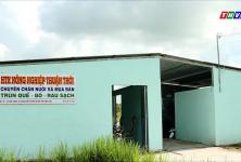 Hợp tác xã nông nghiệp Thuận Thới hoạt động hiệu quả