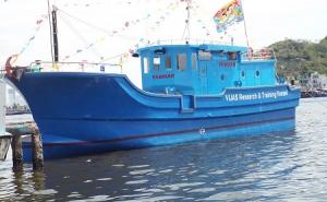 Câu cá ngừ công nghệ Nhật Bản - hướng đi mới cho ngư dân Việt Nam
