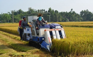 Tam An (Quảng Nam): Thu nhập của người dân tăng 2,5 lần
