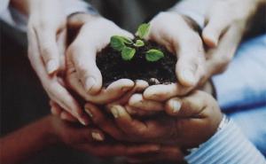Kinh nghiệm Đài Loan: Xây dựng Nông thôn mới gắn với phát triển nông nghiệp sinh thái